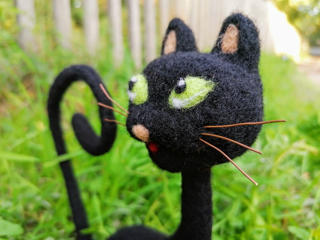 Gatto nero, particolare
